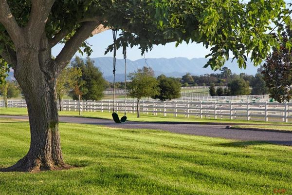 Luxury homes in a Trophy Equestrian Estate