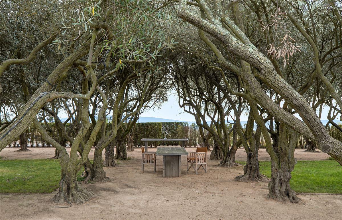 Luxury homes in Rancho La Zaca in Santa Barbara