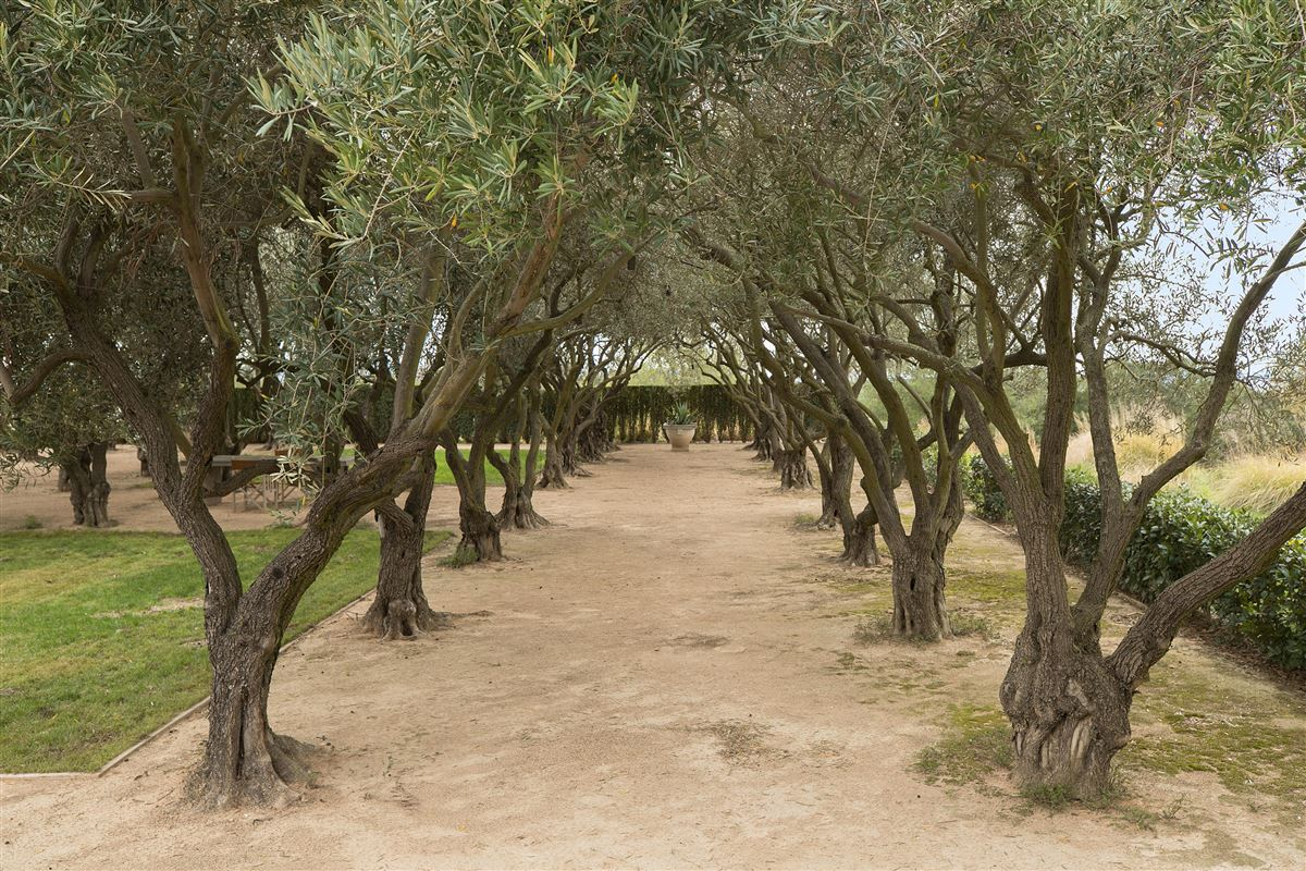 Mansions in Rancho La Zaca in Santa Barbara