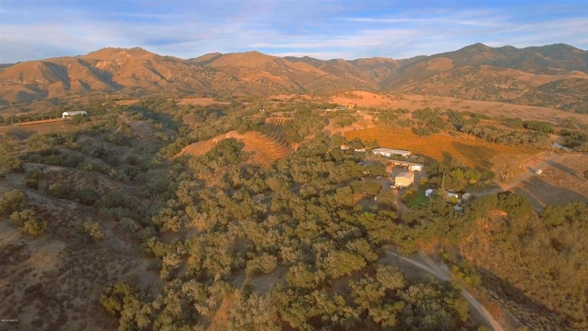 Luxury homes  remarkable Rancho La Zaca home