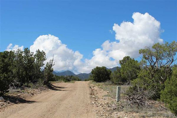 Luxury properties 40 acre lots in a gated community