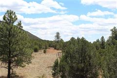 beautiful 163 acre property luxury properties
