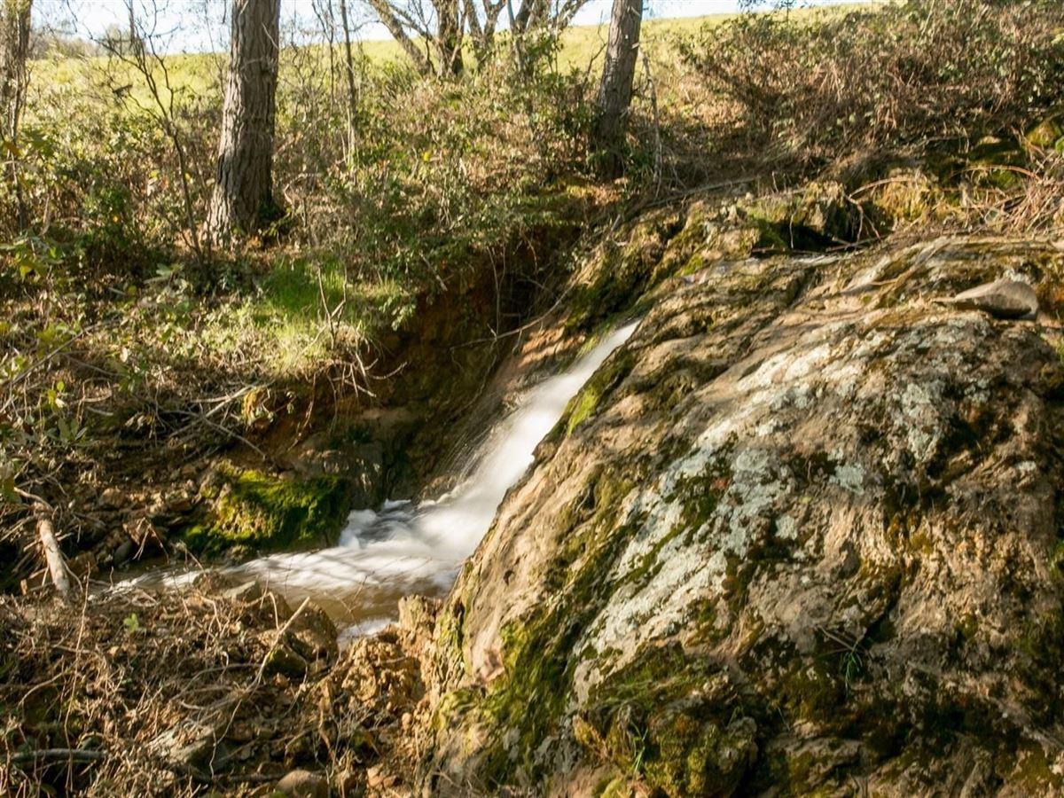 Luxury real estate 140-plus acres in shingle springs