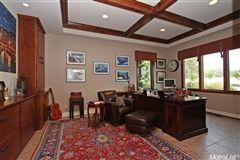 Luxury properties Luxury Vineyard Estate