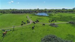 59 acre estate property in the heart of loomis mansions