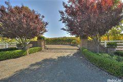 Exquisite Tuscan Villa luxury real estate