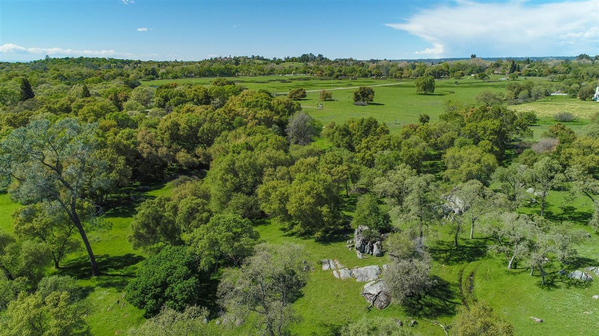 Mansions in 59 acres in loomis