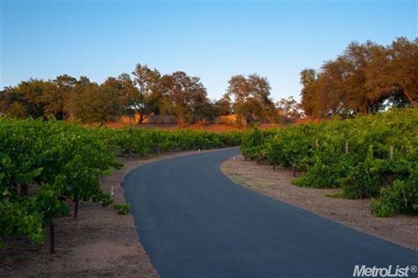 Luxury properties parcel with a vineyard in loomis