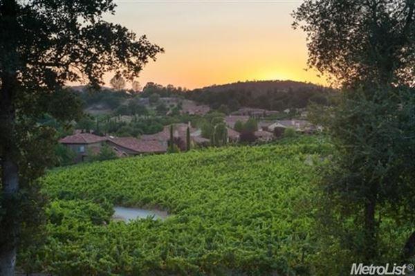 parcel with a vineyard in loomis luxury properties
