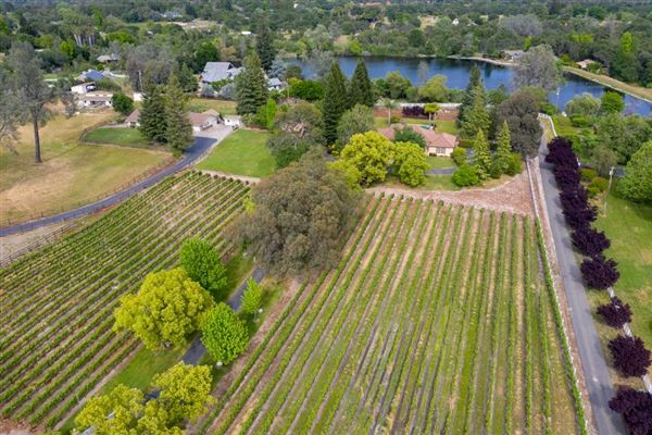 Mansions country property on five acres with vineyard