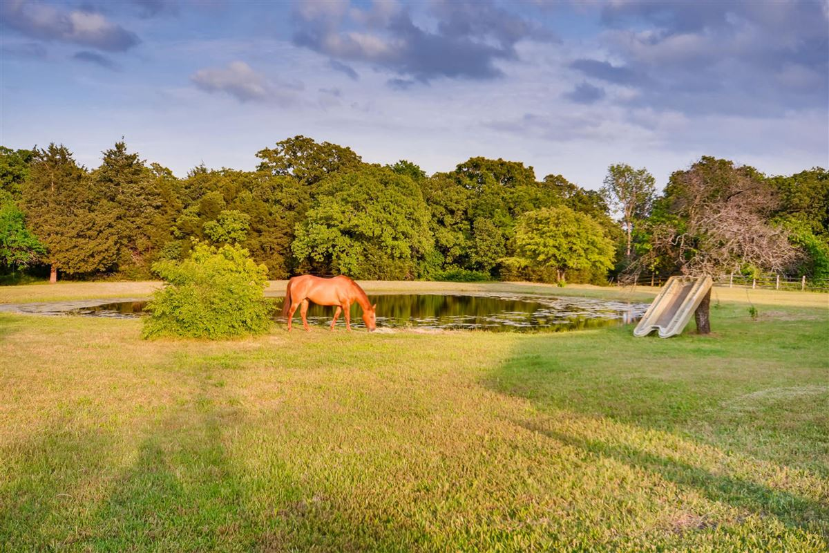 Luxury real estate Horse lovers dream