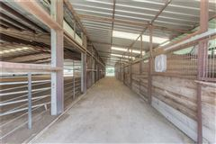 Mansions Turn-key 38-plus acre horse facility