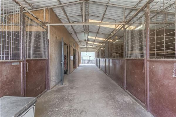 Luxury properties Turn-key 38-plus acre horse facility