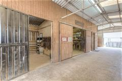 Luxury homes Turn-key 38-plus acre horse facility