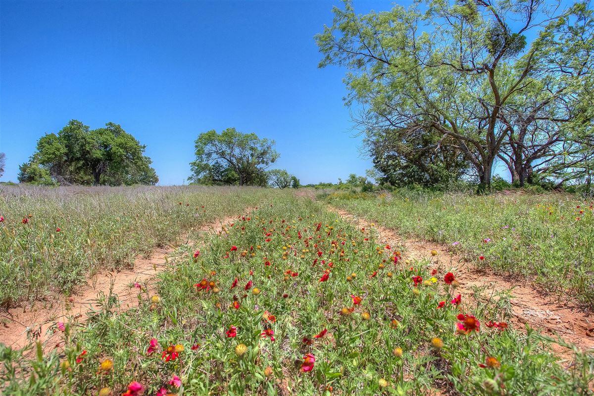 Luxury homes idyllic Brazos River Valley ranch