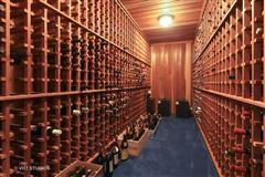 classic brick Tony Grunsfeld home luxury real estate