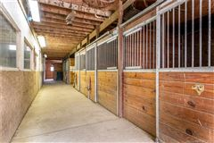 home and equestrian facility in clinton mansions