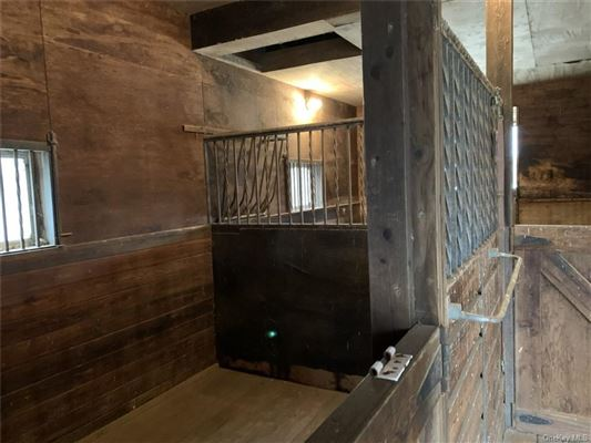 Mansions in Maplemint Farm - exceptional 8-acre equestrian estate