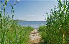 Luxury homes in Gracious rambling Cape with deeded beach rights