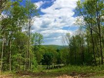 Luxury homes proposed new home high above Lake Waramaug