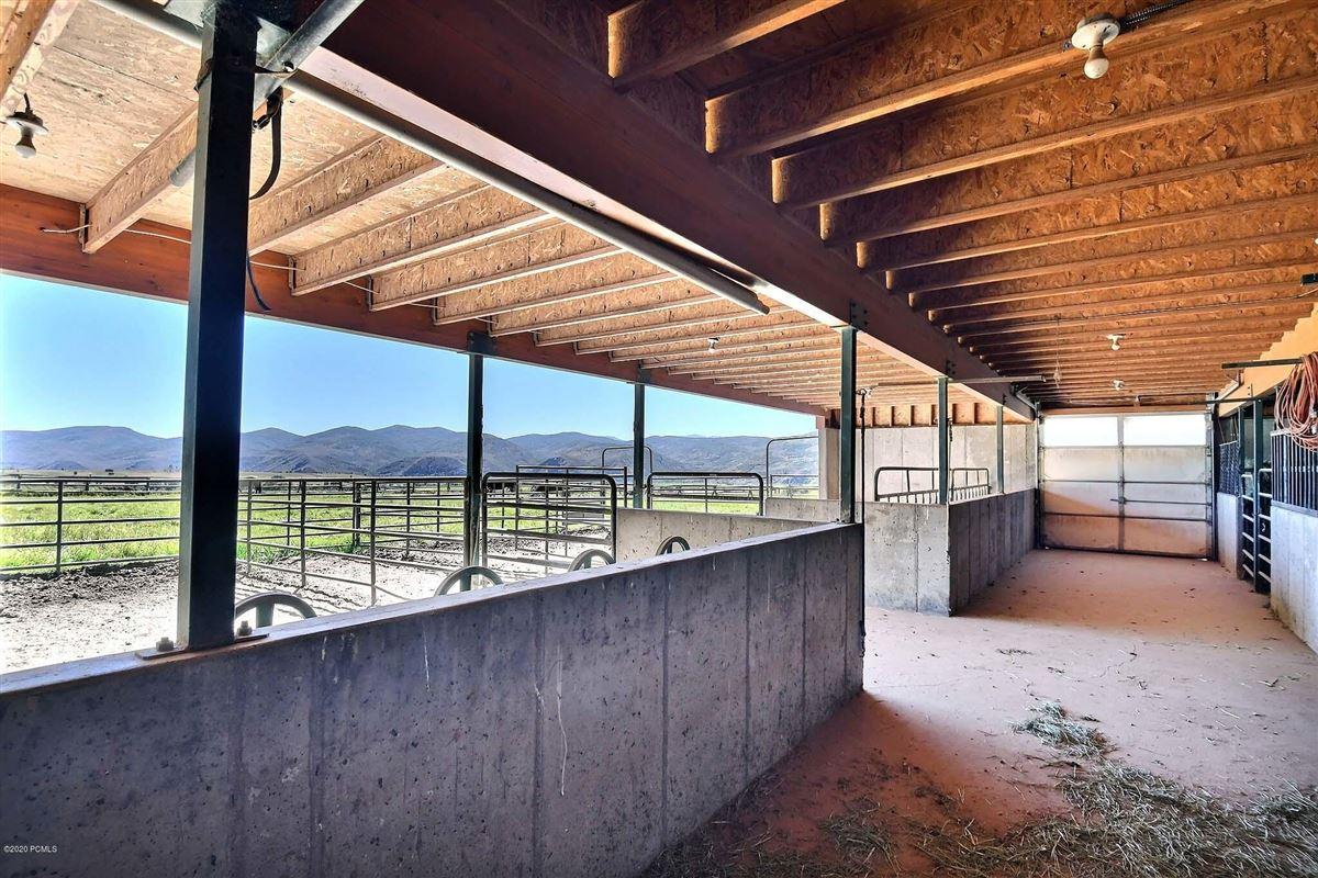 12-plus acre equestrian estate mansions