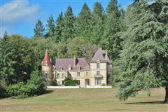 Mansions in grand chateau