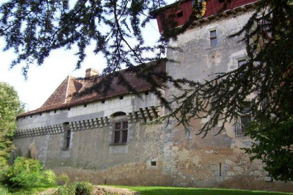 Mansions Very beautiful castle with a swimming pool
