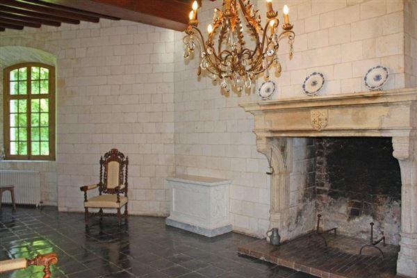 Mansions remarkable castle