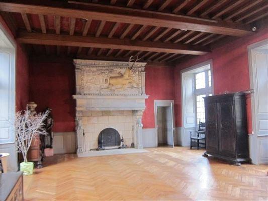Luxury properties Renaissance-style castle
