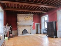 Luxury homes Renaissance-style castle