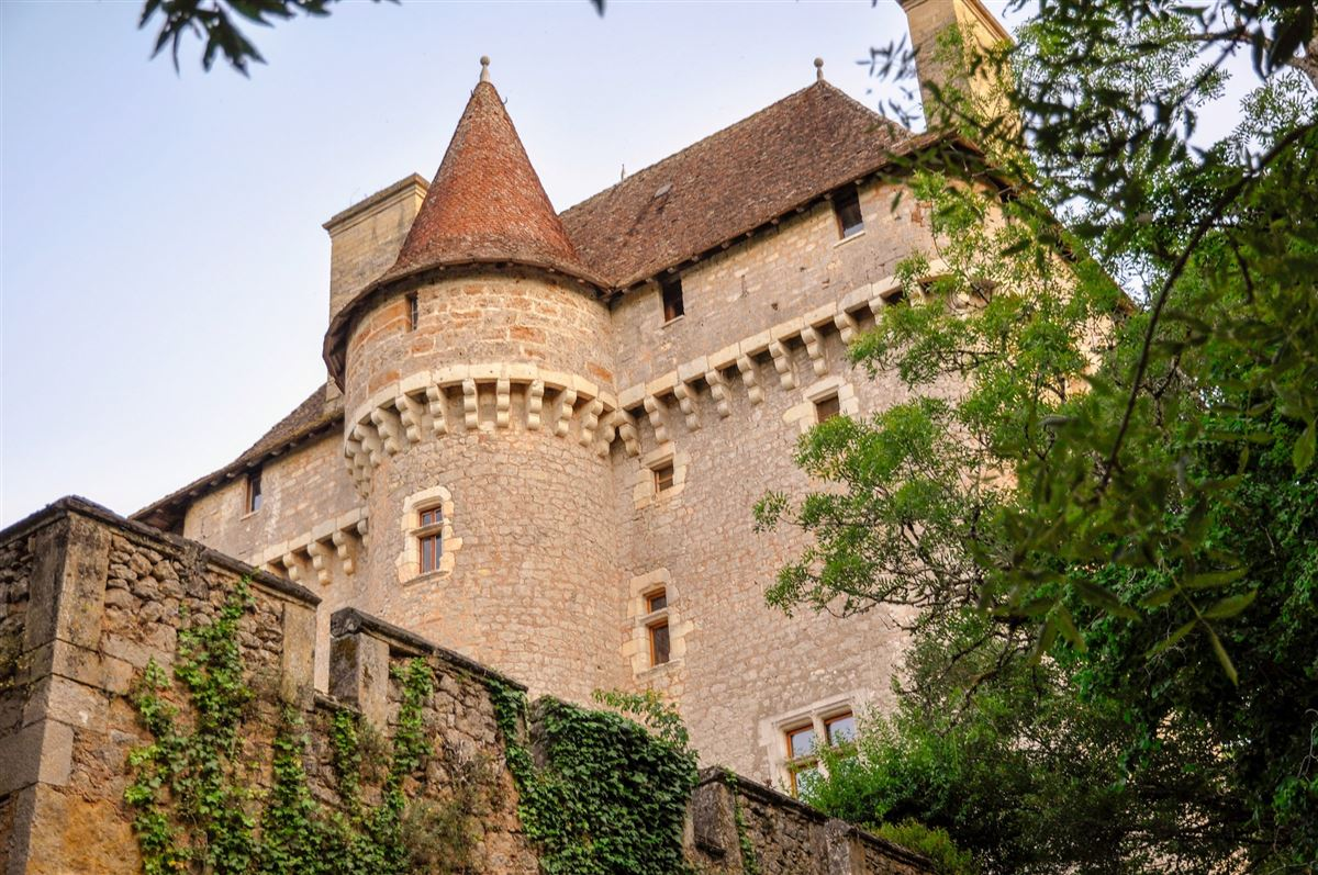 exceptional castle and vineyards luxury properties