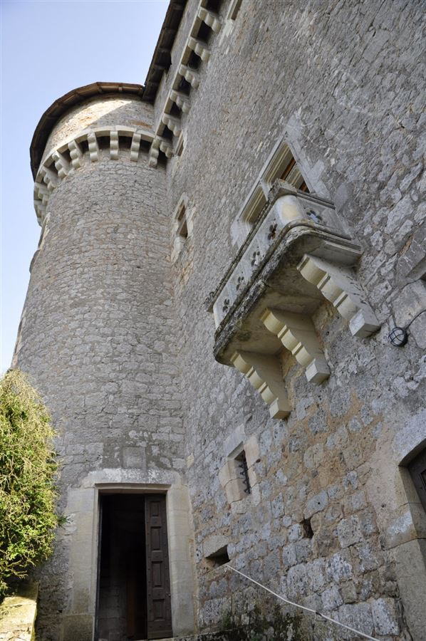 exceptional castle and vineyards mansions