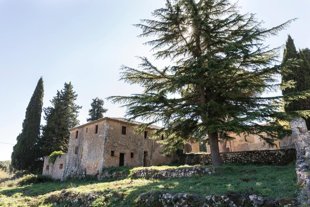 CHARMING ESTATE ON THE HILLS OF SIENA - TUSCANY luxury homes