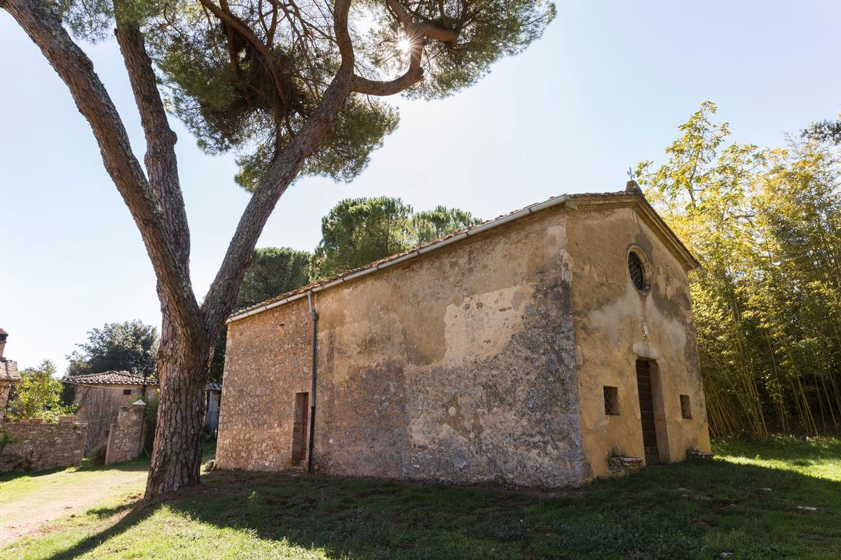 Luxury real estate CHARMING ESTATE ON THE HILLS OF SIENA - TUSCANY