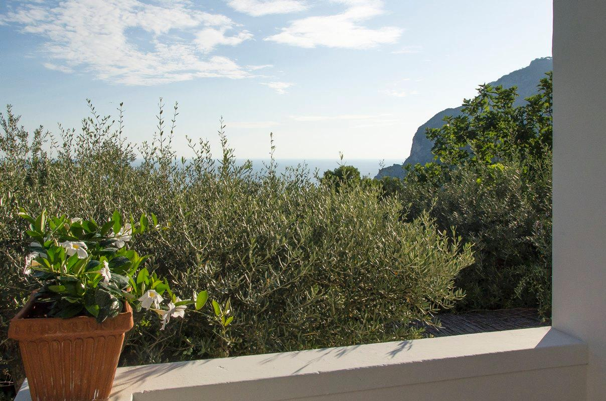 Luxury homes Amazing villa in the heart of Capri island