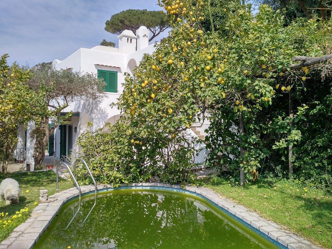 Amazing villa in the heart of Capri island luxury homes