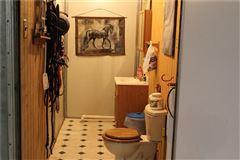 Mansions 25 acre equine estate