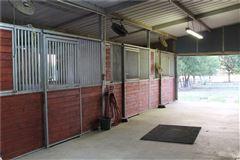 25 acre equine estate mansions