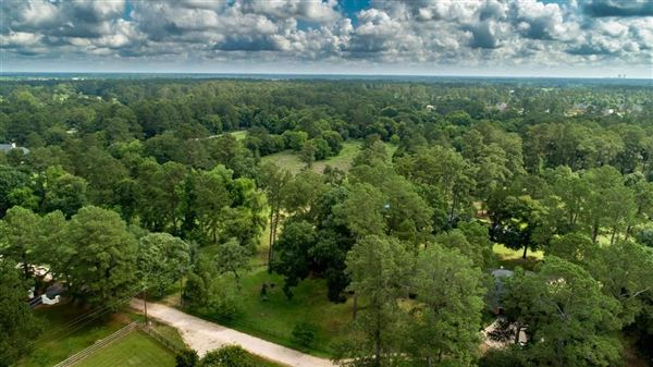 Luxury homes nearly 15 acres of beautiful land