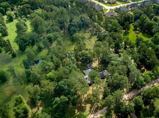 nearly 15 acres of beautiful land mansions