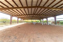 Luxury homes fabulous turnkey equestrian facility