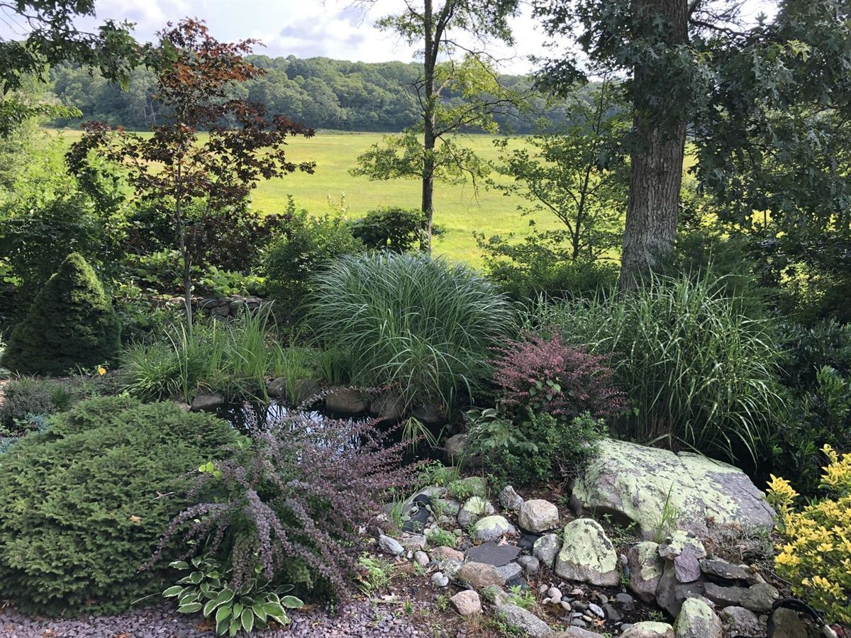 Wing Pond Estates luxury properties