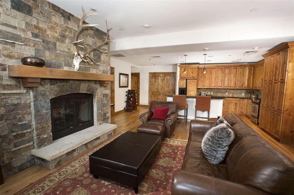 Luxury homes Ski Lodge condo