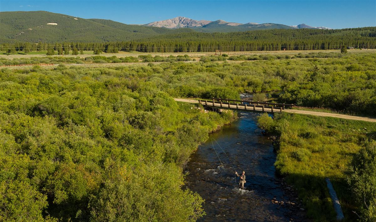 Luxury homes in The Wild Horse Ranch