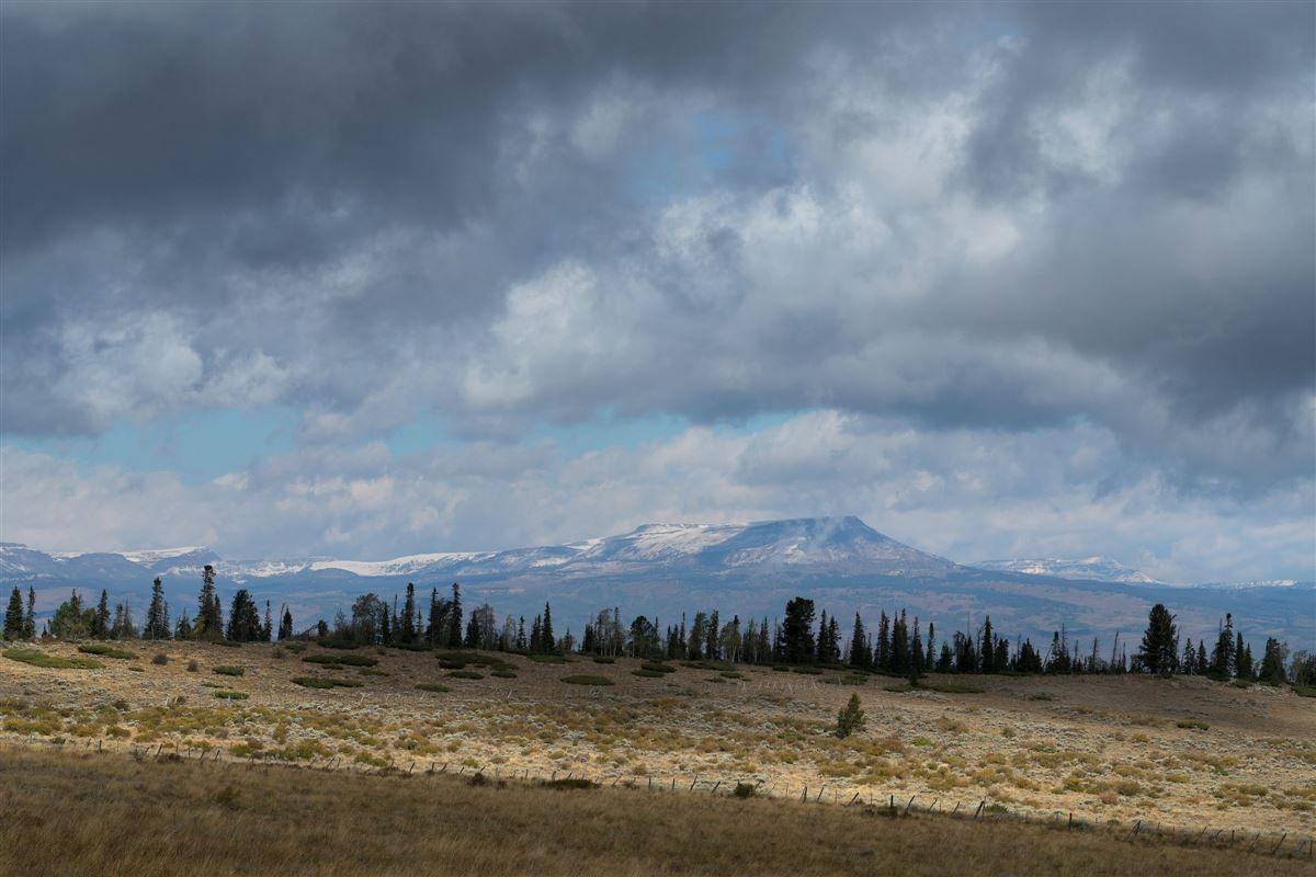 Premier Colorado Legacy Ranch luxury properties