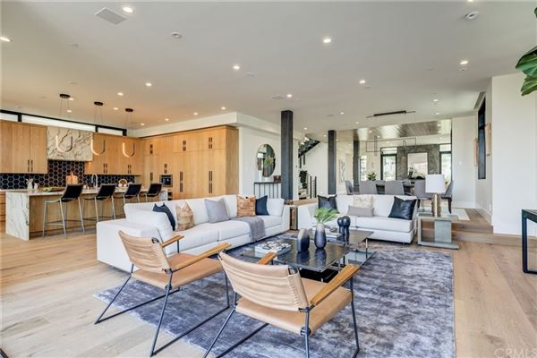 Luxury real estate immaculate new mid-century modern