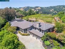 Luxury homes in unique vineyard opportunity