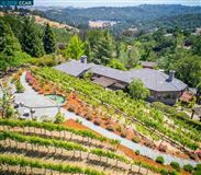 Mansions in unique vineyard opportunity