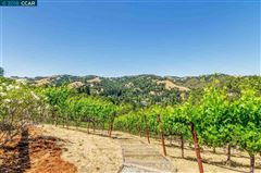Luxury homes unique vineyard opportunity