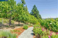 unique vineyard opportunity luxury homes